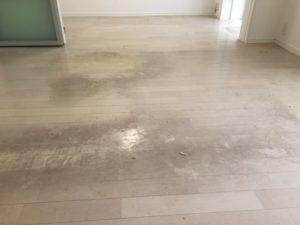 床剥離洗浄 東京
