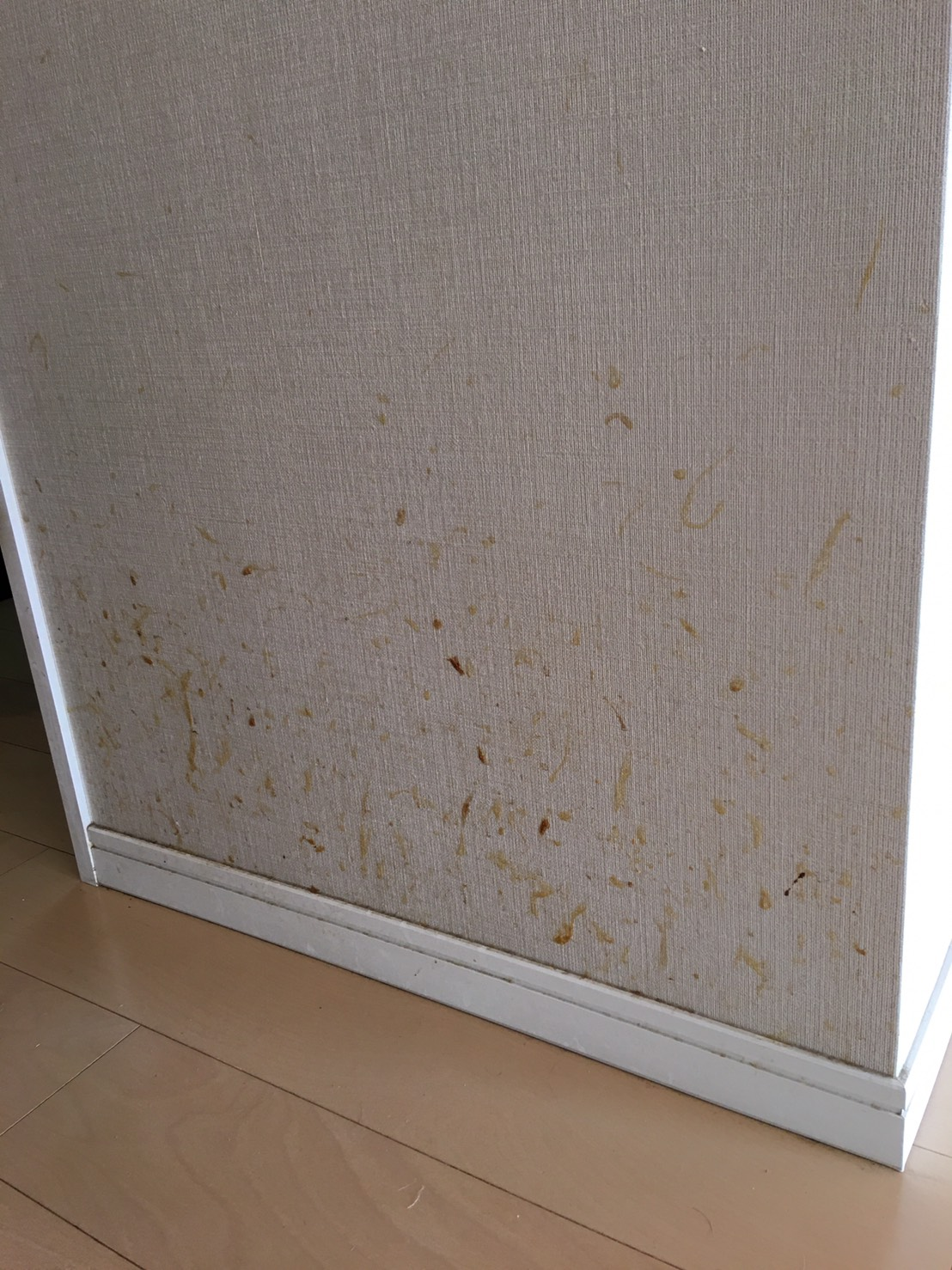 空室清掃 東京